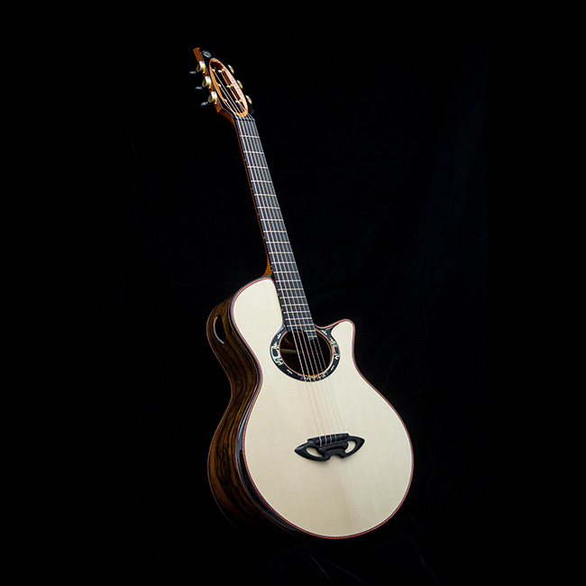 Casimi Guitars C2