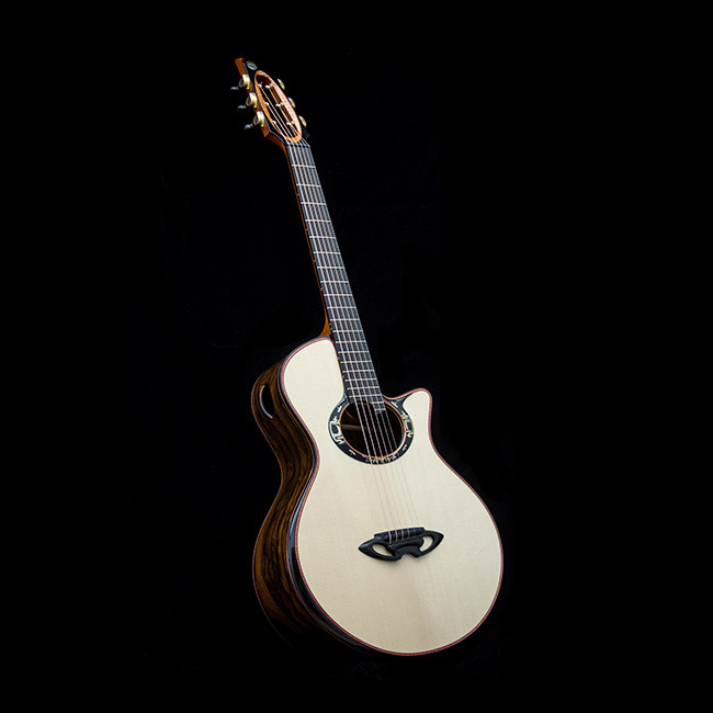 Casimi Guitars C1S